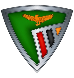 steel shield with flag zambia vector image vector image