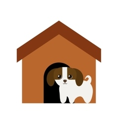 Puppy domestic mammal brown house vector