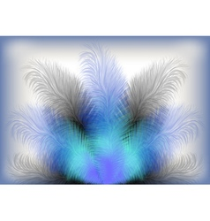 Colorful feather background vector image vector image
