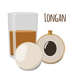 longan exotic fruit tropical vitamin dessert flat vector image vector image