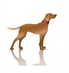 Dog vector