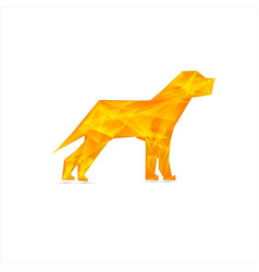 celebration yellow background with dog vector image