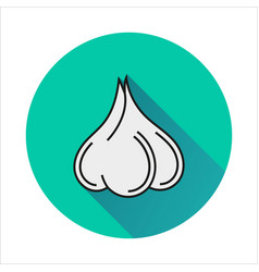 Garlic simple icon on white background vector