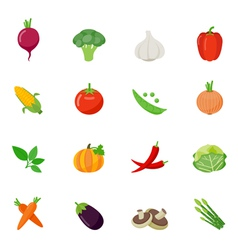 Food icon flat full color vector
