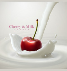 cherry falling in the milk vector image