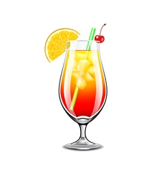 Sex on the beach cocktail isolated vector image