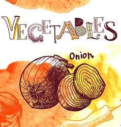 Hand drawn Onions vector image