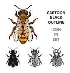 bee icon in cartoon style isolated on white vector image vector image