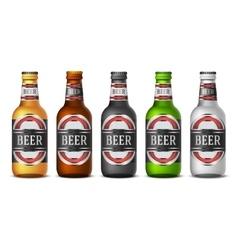 Bottle beer vector image