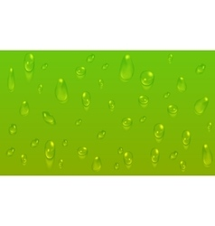 Green natural background with water drops vector image