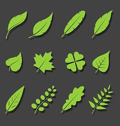 leaves green icon set vector image vector image