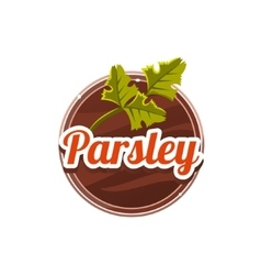 Parsley spice vector