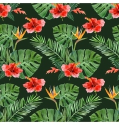 hand drawn tropical plants seamless vector image