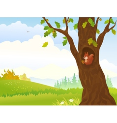 Autumn squirrel vector image