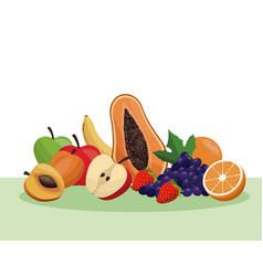 Fruit healthy food nutrition vector