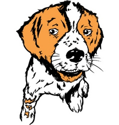 puppy design vector image