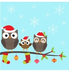 Christmas family of owls vector image vector image