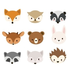 Cute woodland animals collection vector image vector image