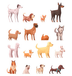 dog breeds retro cartoon icons collection vector image vector image