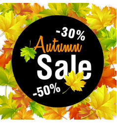 autumn sale fall sale design with autumn leaves vector image vector image