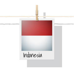 Photo of indonesia flag on white background vector