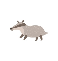 Grey badger walking vector