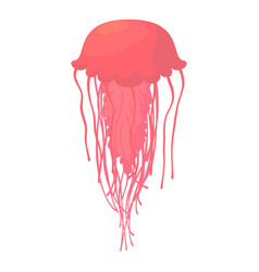 jellyfish icon cartoon style vector image