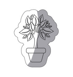 Silhouette tree with leaves inside flower pot vector