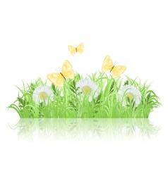 Green meadow vector image