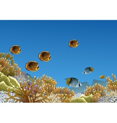 Coral reef with butterfly fishes vector