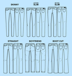 main fits of women denim line vector image
