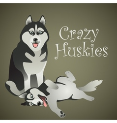 Two funny crazy Huskies vector image