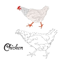 Educational game connect dots to draw chicken bird vector