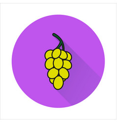 Grapes simple icon on white background vector