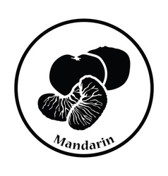 Icon of Mandarin vector image vector image