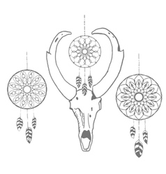 Skull of an antelope with dream catchers vector