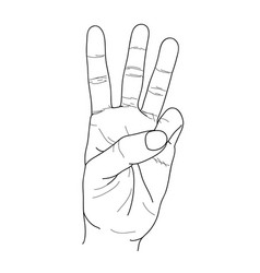 finger3rd vector image vector image