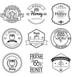 Vintage frame with Honey label set template vector image