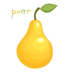 Ripe pear vector