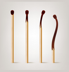 Realistic burnt match various stages of vector