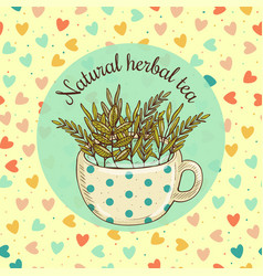 Sketch card - natural herbal vector
