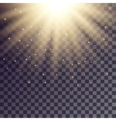 Golden rays from top with shiny particles vector