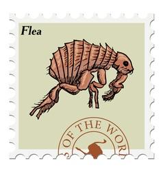 Flea vector