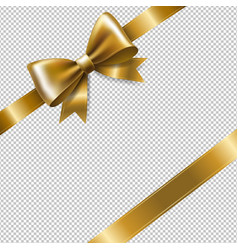 golden ribbon bow vector image