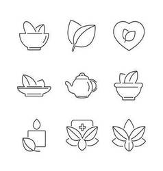 Line icons set of alternative medicine herb icons vector