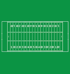 American football pitch vector image