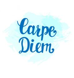 carpe diem inspirational hand lettering vector image