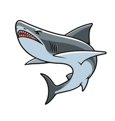 Shark for mascot tattoo or t-shirt print design vector image