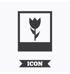 Macro photo frame icon flower photography vector