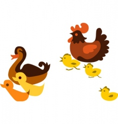 ducks and chickens vector image
